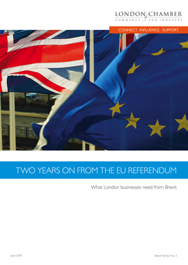 Two Years on from the EU Referendum